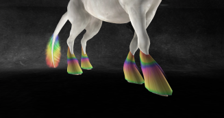 over-the-rainbow-feathers-raw